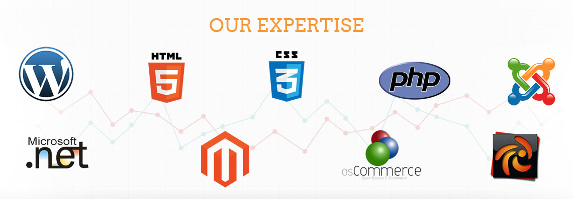 Our Expertise