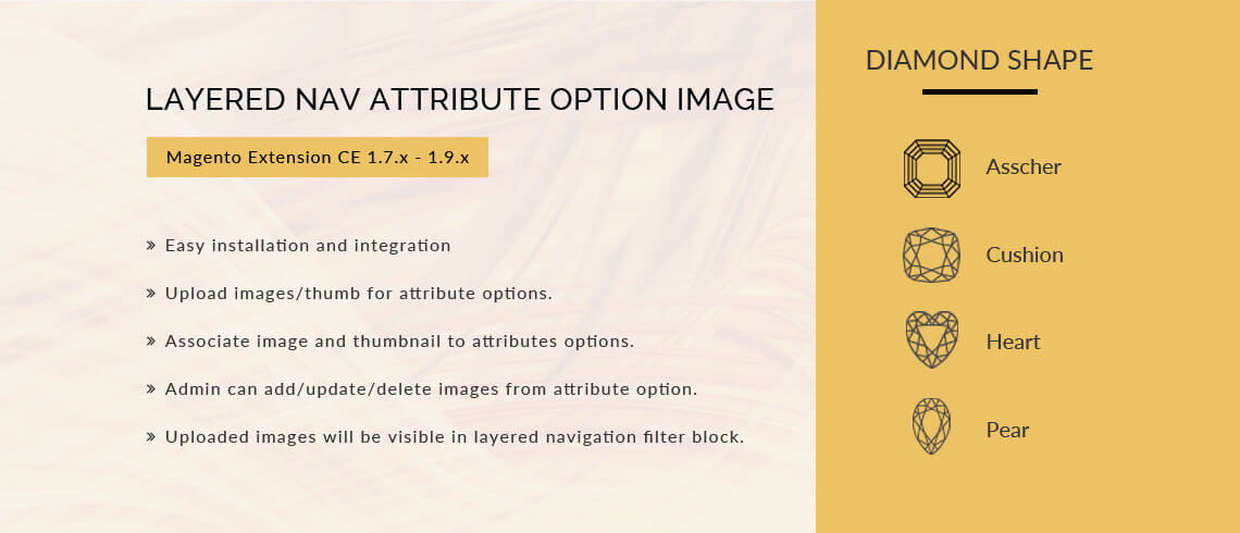 Layered Nav Attribute Option Image - Magento Extension