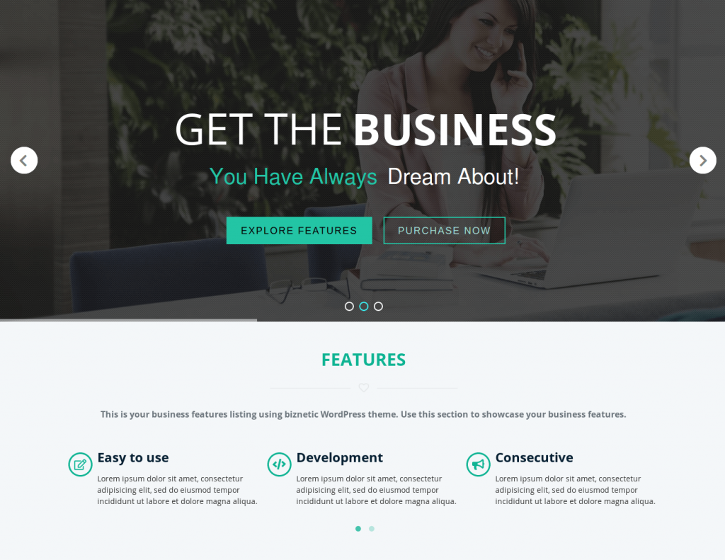 10+ Impressive One Page WordPress Themes For Business Or Personal Websites