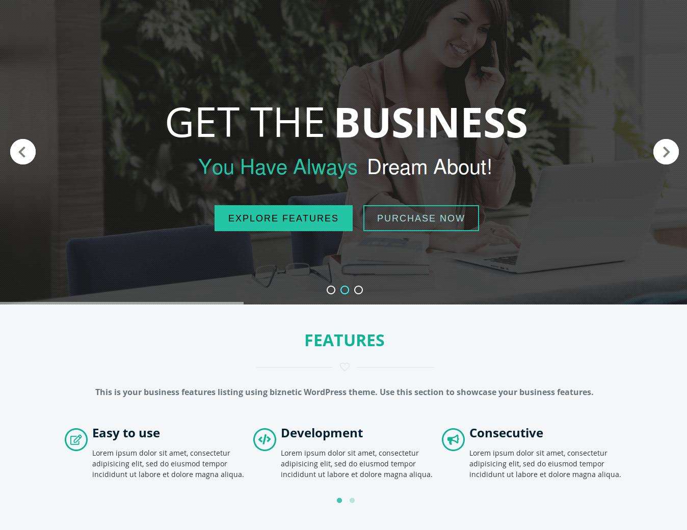 Biznetic WordPress Theme
